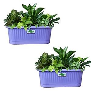 Minerva Naturals Railing Pots,Plastic Railing Pots | Wall Planter - Violet (Pack Of 2)