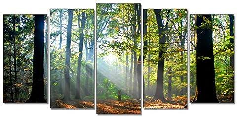 Tableau 100 200 - DekoArte 10 - Tableau moderne, Ppaysage forêt