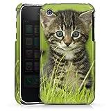 DeinDesign Coque Compatible avec Apple iPhone 3Gs Étui Housse Kitten Bébé Chat Chat