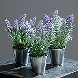 Lavendel im Zinktopf 23 cm 3 Stück sortiert Kunstpflanzen von DPI