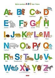 Fragenbär-Lernposter: Mein erstes ABC der Tiere (in der Schulbuch-Druckschrift) M 50 x 70 cm: Gerollt, matt folienbeschichtet, abwischbar (Lerne mehr mit Fragenbär)