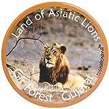 Toshakhana 1306 Button Pin Badge Cum Fridge Magnet Gir Forest Gujarat India Souvenir