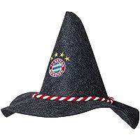 FC Bayern München Filzhut Logo