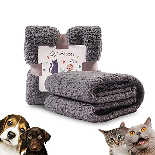 softan Flauschige Hundedecke Waschbar, Extra Dicke und Weiche Haustierdecke aus Sherpa-Fleece für Hundebett, Couch, Sofa, 60x80cm, Grau