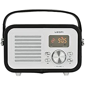 Bluetooth Speakers Portable Radio, VOOKI 5W Wireless Outdoor Boombox Speaker with FM Radio, Enhanced Bass, Remote, Built-in Mic, Support TF SD Card, USB Input, AUX Line Input, etc