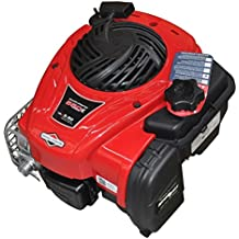 Motor cortacésped Briggs and Stratton 550E Series ...