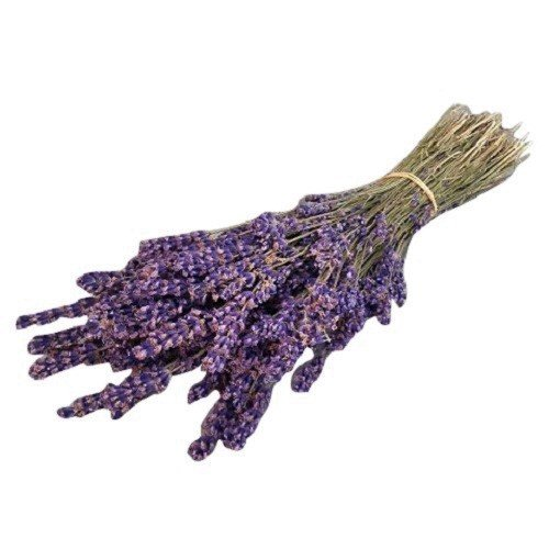 (LARGE BUNCH PROVENCE LAVENDER FLOWERS DRIED FLOWER BOUQUET 300 STEMS FRAGRANT WEDDING CRAFTS DECORATION by Harrington Marley)