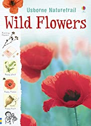 Wild Flowers (Nature Trail) (Usborne Nature Trail)