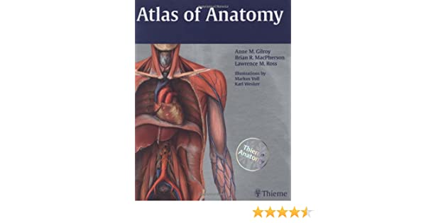 Buy Atlas of Anatomy (Thieme Anatomy) Book Online at Low Prices in