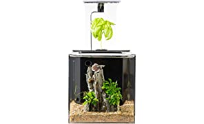 EcoQube ecoqubec Aquarium – Desktop-Betta Fisch Tank für Living Büro und Home Décor Wireless Remote (No Accessories)