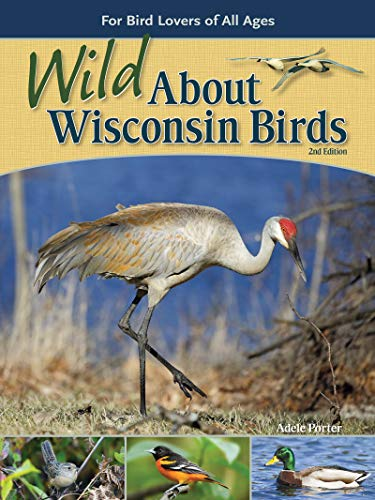 Wild about Wisconsin Birds: For Bird Lovers of All Ages (Wild about Birds)