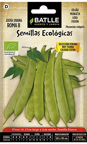 Semillas Ecológicas Leguminosas - Judía Enana Roma II- ECO - Batlle