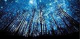 yeesam Art neuen 5D Diamant Malerei Kit–Sterne und Forest–DIY Kristall Diamant Strass Gemälde eingefügt Malen nach Zahlen Kits Kreuzstich Stickerei