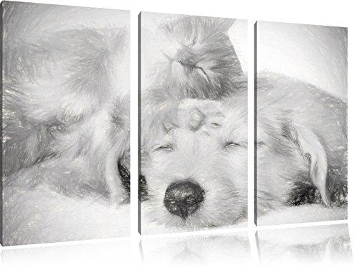 Gattino e cucciolo di carbone a pelo effetto 3-pezzo picture tela 120x80 immagine sulla tela, XXL enormi immagini completamente Pagina con la barella, stampe d'arte sul murale cornice gänstiger come la pittura o un dipinto ad olio, non un manifesto o un banner,