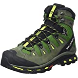 Salomon Quest 4d 2 Gtx, Men's High Rise Hiking Shoes