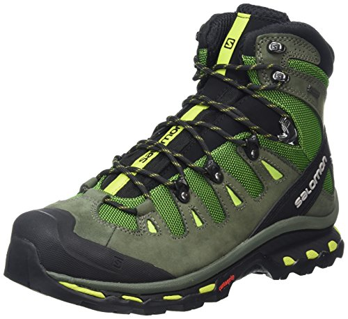 Salomon Quest 4d 2, Chaussures de Randonnée Hautes Homme Vert (Tonic Green/Night Forest/Green Glowow)