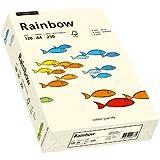 Papyrus 88042254 Drucker-/Kopierpapier farbig: Rainbow 120 g/m² DIN-A4, 250 Blatt Buntpapier hellchamois (Hellbeige)