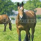 Kiepenkerl Country Horse 2120 Pâturage pour chevaux Balance 10 kg ...