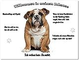 Merchandise for Fans Blechschild/Warnschild/Türschild - Aluminium - 20x30cm - - Willkommen in Meinem Zuhause - Motiv: Englische Bulldogge - 02