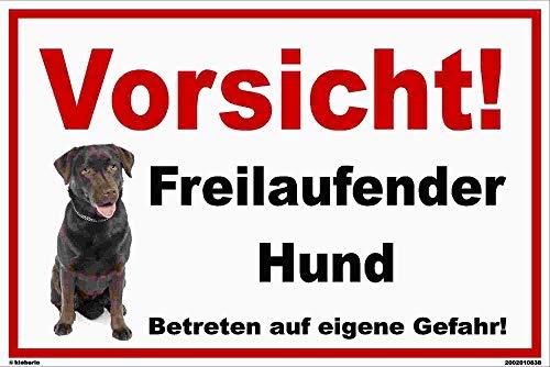 kleberio® - Vorsicht! Freilaufender Hund! Labrador - Schild Kunststoff Warnschild Hinweisschild Vorsicht Hund 20 x 30 cm