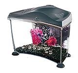 Best Marina Aquariums - Marina Aquarium pour Aquariophilie Betta Kit Graphite 6,7 Review
