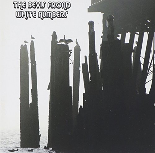 the Bevis Frond: White Numbers (Audio CD)