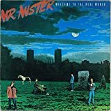 "Mr. Mister - Welcome To The Real World (ITA 1985 RCA PL89647) LP 12"" / EX"