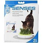 Catit Senses Grass Garden Refill Pack, Pack of 2 6