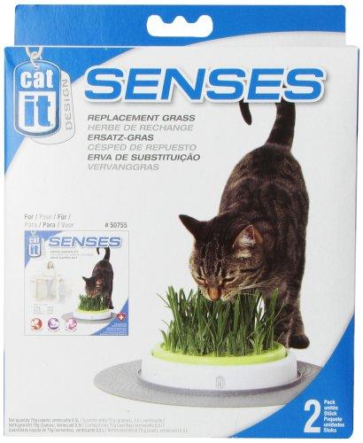 Catit Senses Grass Garden Refill Pack, Pack of 2 3