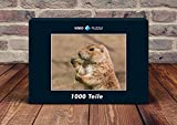 VERO PUZZLE 61460 Animals Marmot, 1000 pieces in, cellophaned puzzle box