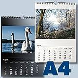 A4 Bastelkalender für 2019 Kreativkalender DIN A4 für Fotos bis 13x18 zum selbst gestalten Fotokalender Foto Hobbykalender Kreativ Kalender schwarz/weiss Foto-Kalender zum selber basteln