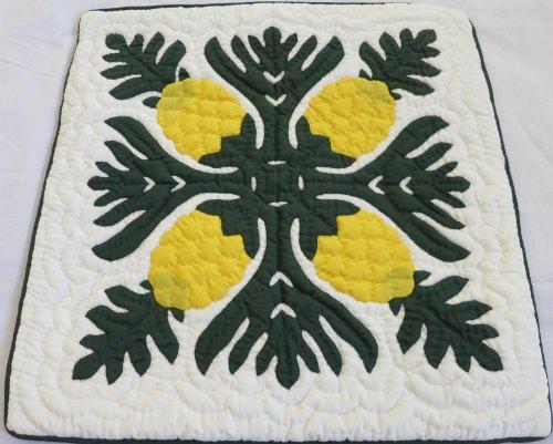 Hawaiian Quilt 2Kissenbezügen, Kissen, 100% Hand Gesteppt/Hand Appliziert 40,6cm -