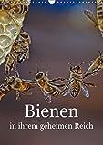 Bienen in ihrem geheimen Reich (Wandkalender 2018 DIN A3 hoch): Die Geheimnisse des Bienenstocks (Monatskalender, 14 Seiten ) (CALVENDO Tiere) [Kalender] [Apr 01, 2017] Bangert, Mark