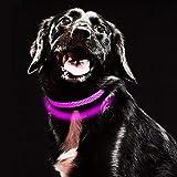 MASBRILL Leuchthalsband für Hunde aufladbar LED hundehalsband Blinkende Lichter mit USB verstellbar 3 Modells und sechs Farben (S, Pink)