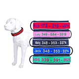 New Clot Personalisierte Bestickter Hundehalsband Leder,verstellbar breites hundehalsband Custom Embroidered Mit Name und Nummer,für Kleine und große Hunde