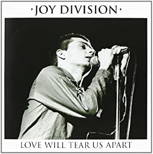 Love Will Tear Us Apart [VINYL]