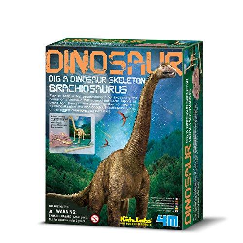 Brachiosaurus Skelett (englische Version) Preisvergleich
