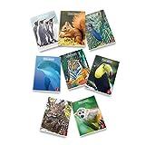 Pigna Animal - Quaderno a quadretti, A4, confezione da 10