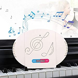 Deshumidificador de piano portátil Mini deshumidificador recargable Secador de aire portátil Deshumidificador de aire absorbente de humedad para piano Enchufe de la UE 100-240V