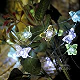 Impress Life® Butterfly String Lights - Spring Summer Seasonal 10ft Copper Wire 50 LEDs with Remote Control for Wedding, Baby Shower, Outdoor, Indoor Holiday Parties, Garden, House, Patio Decorative