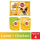 Pedigree Vital Protection Adult Wet Dog Food, Chicken and Lamb in Jelly, 4 Pouches (4 x 100g)