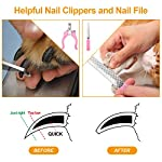 Dog Grooming Clippers, Focuspet 2 Speed Adjustable Dog Clippers Rechargeable Cordless Low Noise Dog Clippers Kit… 11