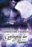 Gefangene der Flammen: Roman (Historische Liebesromane. Bastei Lübbe Taschenbücher)
