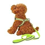 NAttnJf Haustier-Katzen-Hund justierbarer reflektierender gehender Gurt Brustgurt mit Leine Grün M