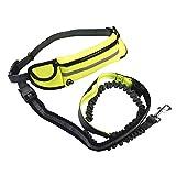 LONGFIT Hundeleine für Taille mit Reflektierenden Fäden bis 122 cm Inklusive Tasche Für Schlüssel, Handy& Münzen