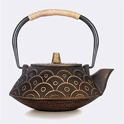 Ahui Japon théière en fonte Kung Fu théière non enduit de fer poignée en fer couvercle Retro Crafts 0.9L