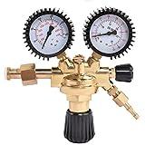COSTWAY Druckminderer Gas Druckregler Druckminderventil Druckregelventil für Argon CO2 Schutzgas zu MIG/MAG Schweißgerät