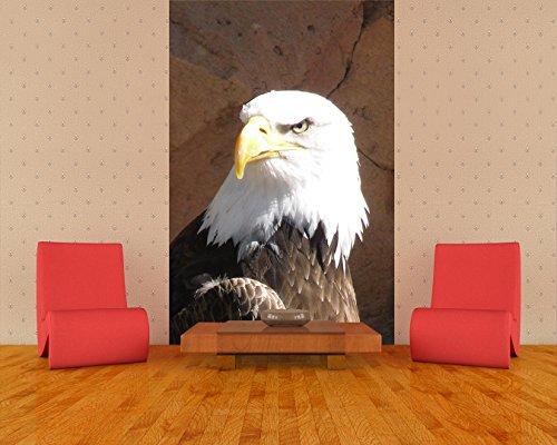 Fototapete selbstklebend Adler - 100x150 cm - Wandtapete - Poster - Dekoration - Wandbild - Wandposter - Bild - Wandbilder - Wanddeko (Adler Bilder)