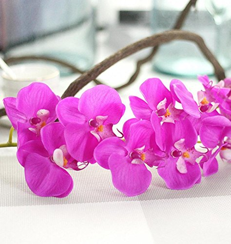 ZEZKT-Home Künstlicher Phalaenopsis Zweig Deko Blüten Zweig Kunst Orchideen Blume Orchidee Lila Wandbild Dekoration Blumen Wellness Spa Blüten Natur Foto-Tapete Wandtapete Fotoposter (72cm, Violett)