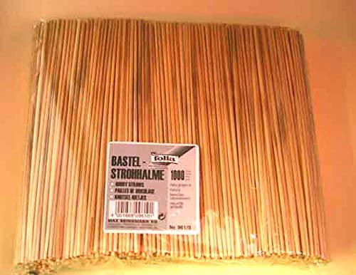 Pailles de bricolage naturelles 22cm, 1000 pièces